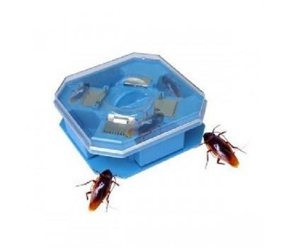 Ловушка для тараканов гуманная